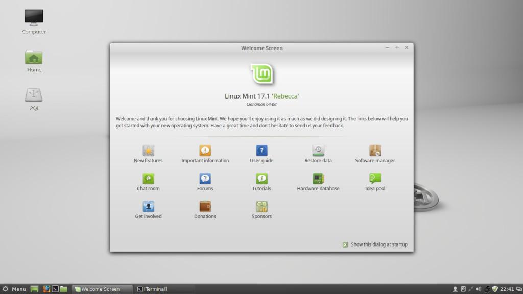 Screenshot Linux Mint Rebecca Cinnamon