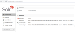 Apache SOLR - Docker - Admin UI